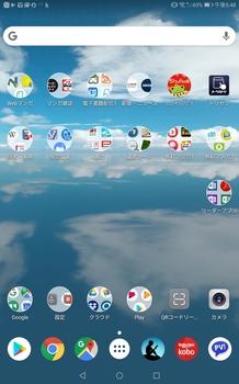 Screenshot_20190117-174832.jpg